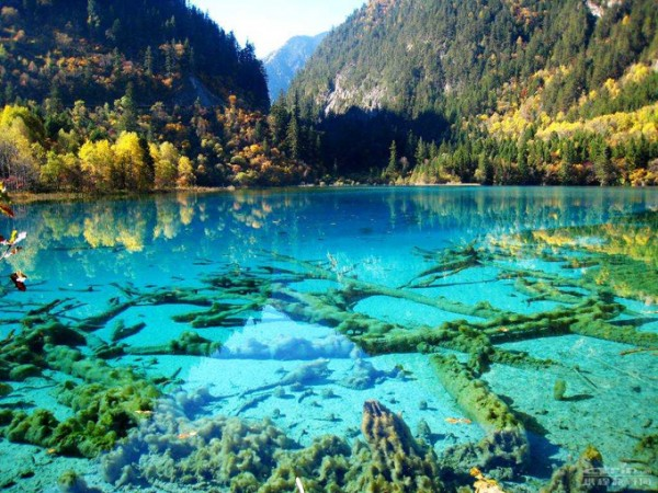 5-lago-cristalino-turquoise-jiuzhaigou-national-park-china-600x450