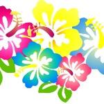 flores-hawaianas