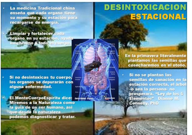 detox-4
