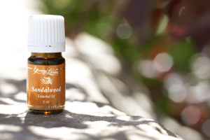 sandalwood-oil (1)