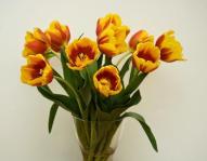 img_como_conservar_las_flores_en_un_florero_16117_orig