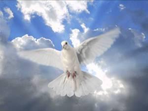 Meditación para la paz interior