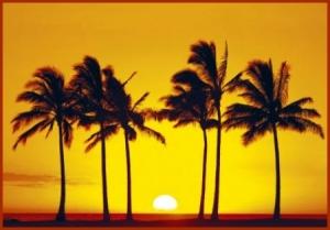 hawai_sol